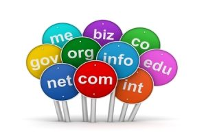 THE VALUE OF .COM AND .NET NAMES- DOMAIN VALUATION