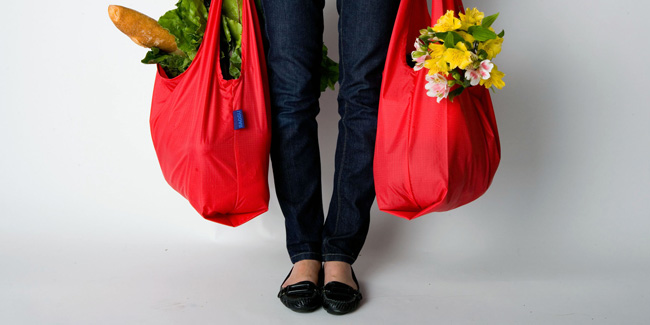 The Environment Benefits From The Use Of Reusable Bags