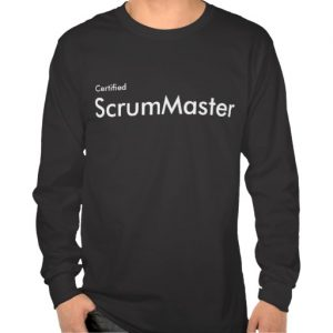 Roles Of An Efficient Scrum Master