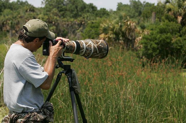 Unforgettable Destinations For Wildlife Photographers