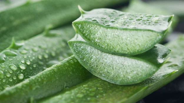 5 Benefits Of Aloe Vera Gel For Skin, Hair And Health