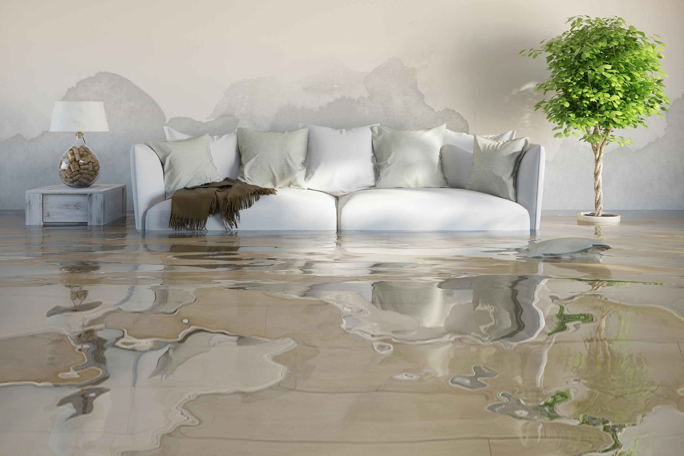 Home Owner Water Damage Restoration Tips
