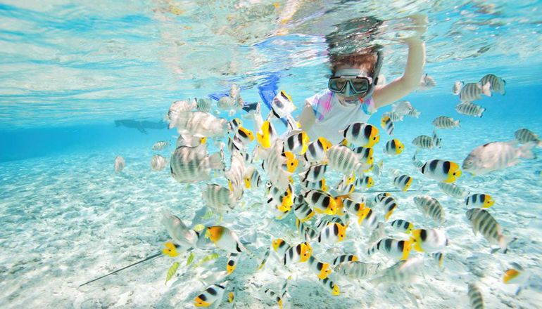Underwater Experience That Cant Be Missed In Malaysia