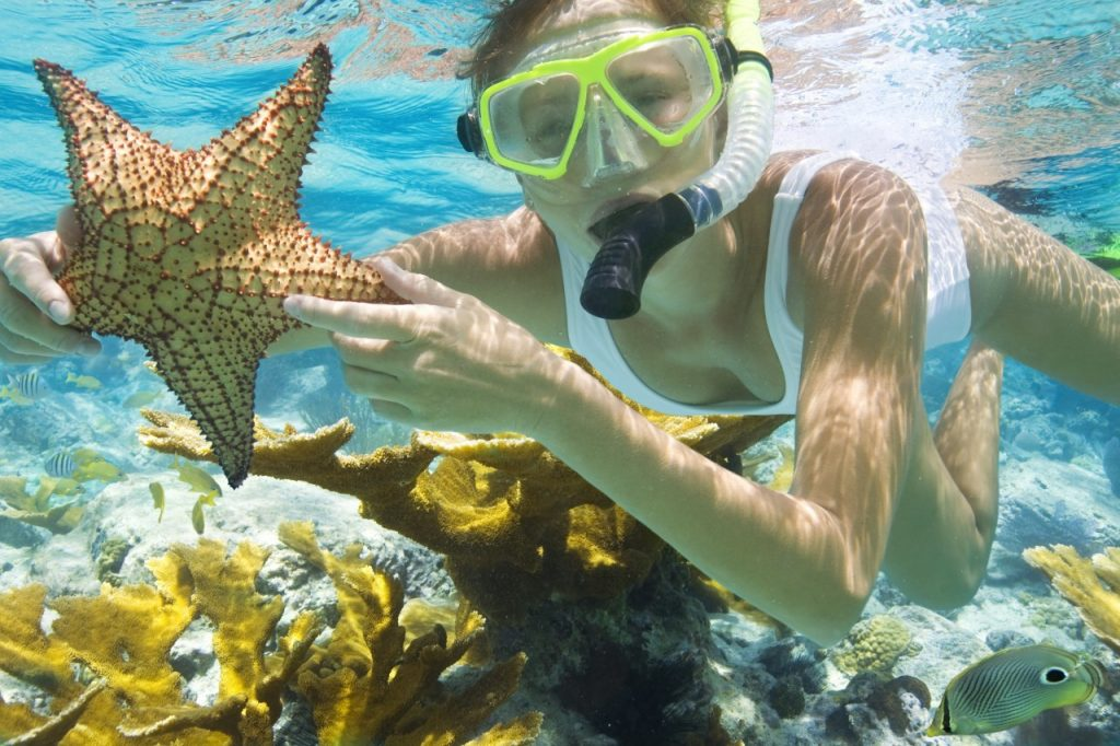 Key West Snorkeling Co. Announces Affiliation With Virginia Beach Vacations