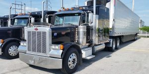 Champion Truck Is The Solution For Efficient Freight Transport Services