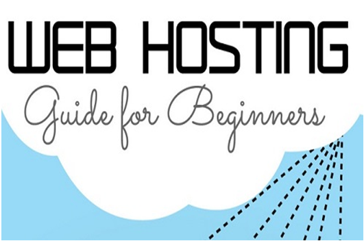 How To Choose Domain and Hosting, Guide For Beginner?