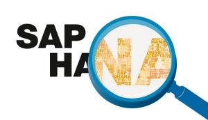 What You Need To Know Before Hiring A SAP HANA Migration Services Provider