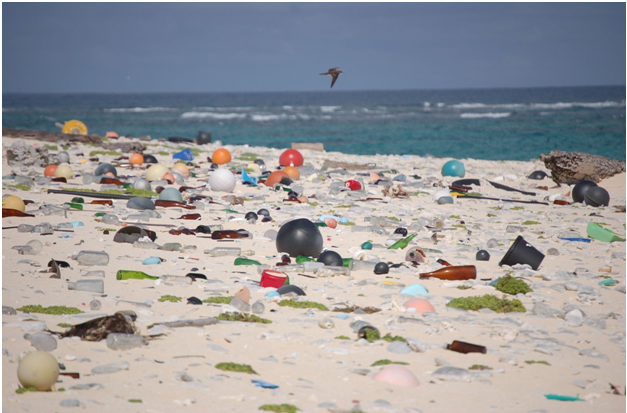 The Plastic Oceans Problem