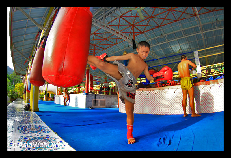 Muay Thai Is An Example Of A Successful Online Business