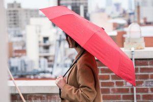 Some Ways Of Bringing Home The Best Travel Umbrella