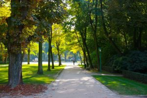 Green Relaxation: 5 Spots For Leisure Walks In Brussels