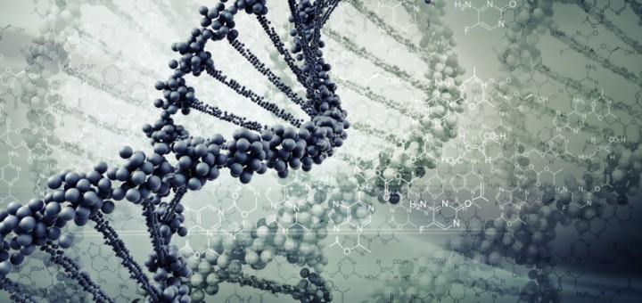 Genetic Engineering and Its Ethics
